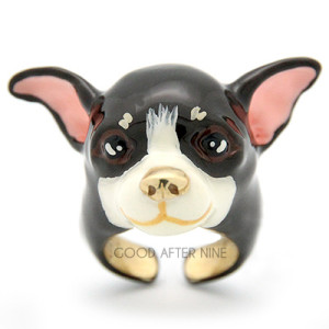 chihuahua ring black