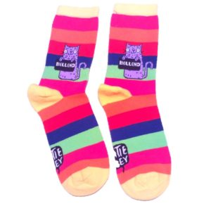 rainbow stripe socks with cats holding sweary signs